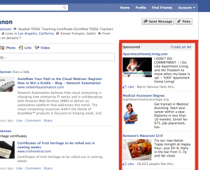 beginner's guide to online paid advertising - facebook example