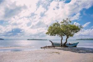 Šri Lanka (Saveen Randula nuotr.)