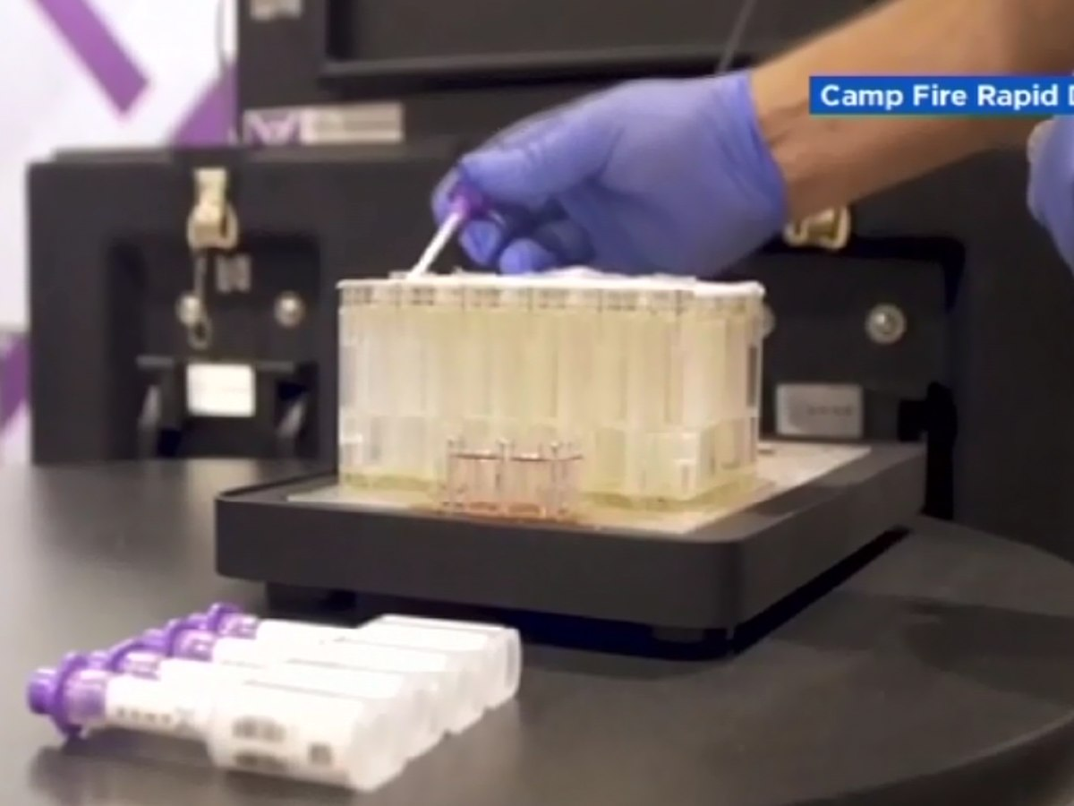 Rapid DNA analysis used to identify Camp Fire victims