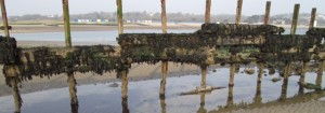 Bembridge Harbour No 1 Groyne in disrepair