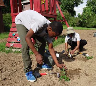 Organizing community through community gardens