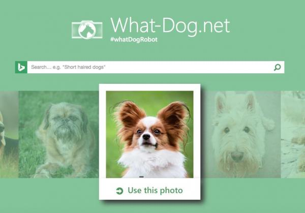 Microsoft-matches-human-faces-to-dogs-with-What-Dognet
