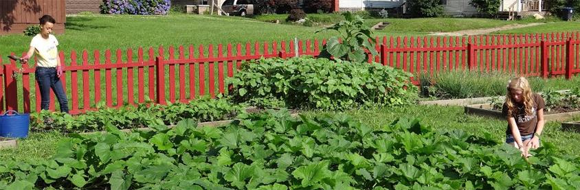 Akron, Ohio community garden volunteer opportunities