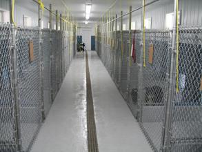 Inside Kennel