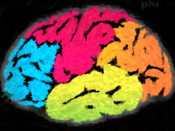 Graphic of the brain