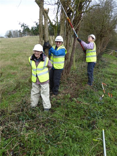 Hedge tidying at Newport
