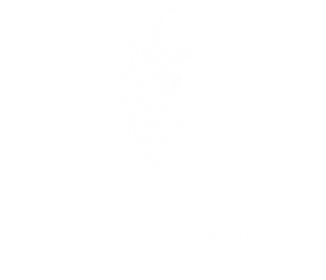 Hunter Entertainment Network