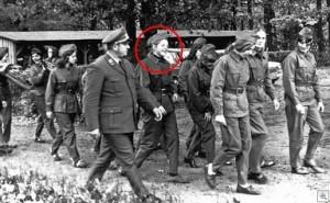 Merkel-fdj