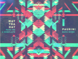 Music Review: Mat Tha Hat / Paurini – Pass Me A Dubplate / Bass Bomb