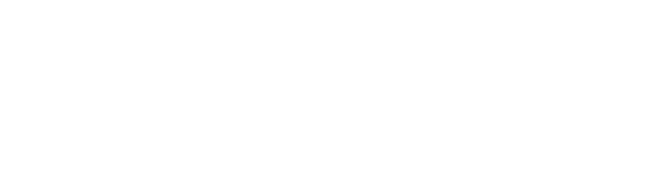 Healthy Holistic Living