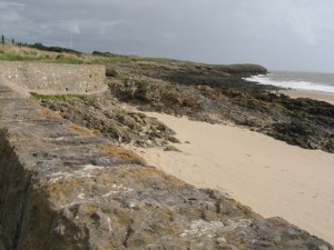 the little island beach and waterford castle