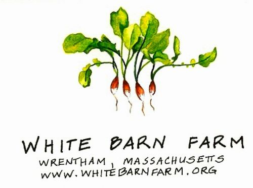 White Barn Farmstand
