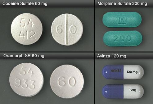 Codeine, Oramorph, Morphine Sulfate and Avinza