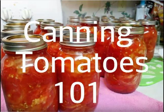 Click on Photo to go to the Canning Tomatoes 101 by Patrick Barton video for the full canning process.