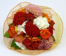 Posy of bright flowers in oranges and whites. Free Delivery North Shore Hospital Auckland.