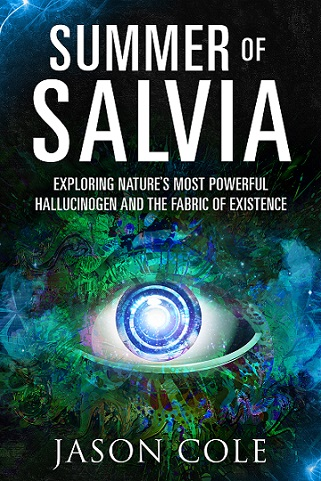 Cover for Summer of Salvia by Jason Cole