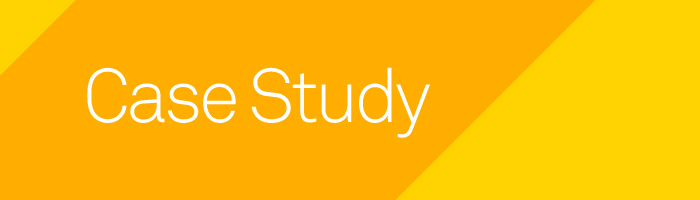 web design case study digital marketing nz