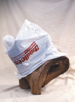 Yummymonkeys.com 1999, wood and plastic bag