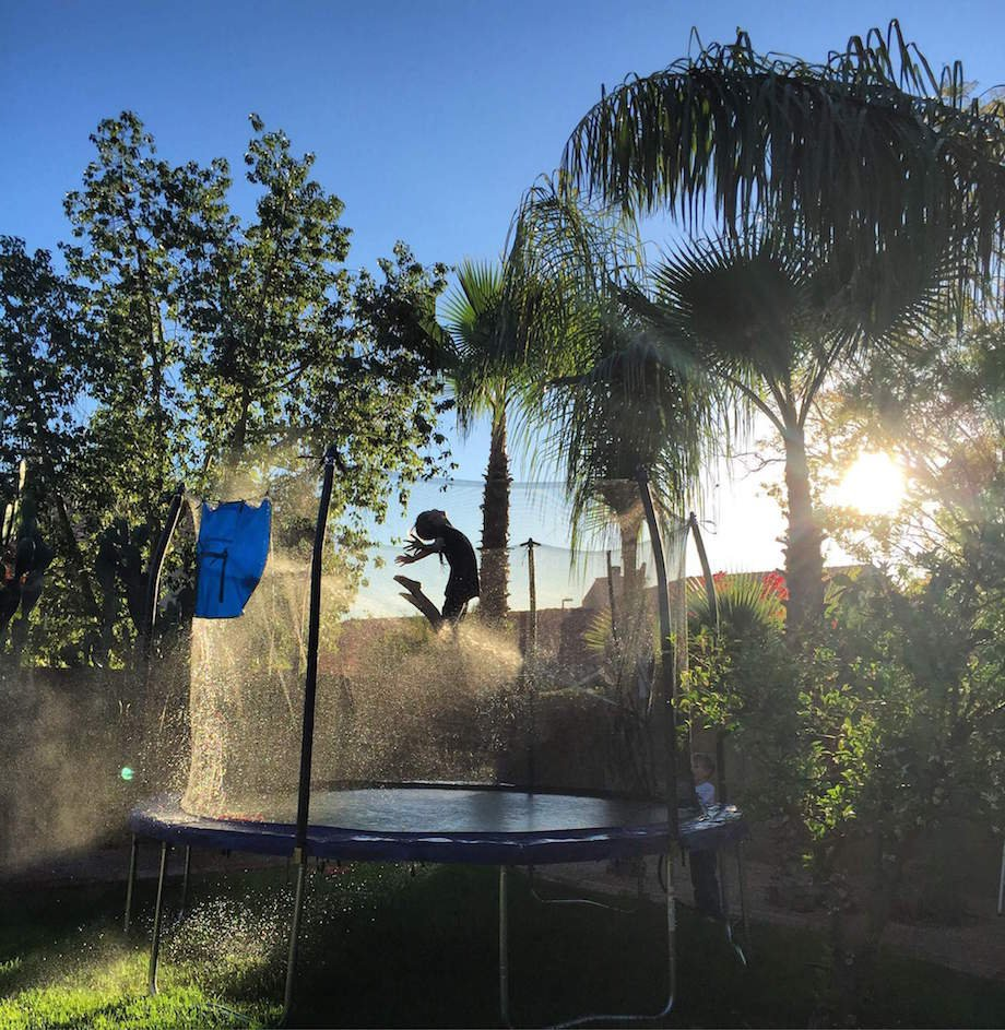 The Best Trampolines Reviews of the Top Picks