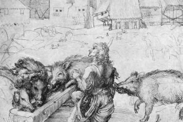 德国画家阿尔布雷 希特·丢勒速写作品