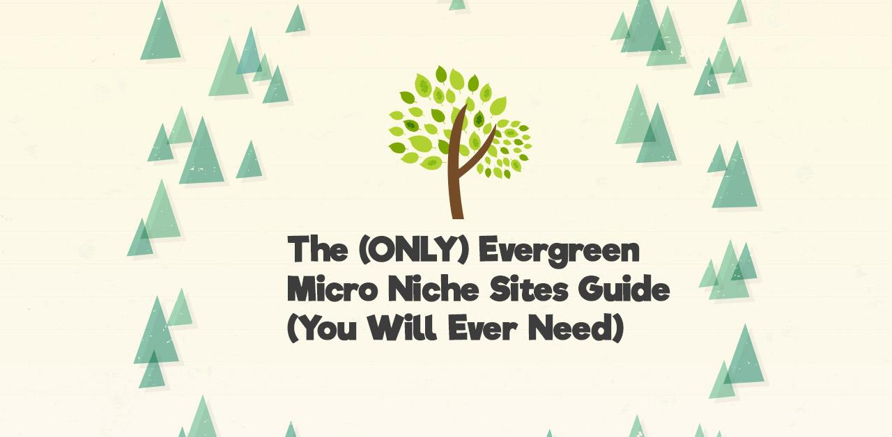 micro niche sites