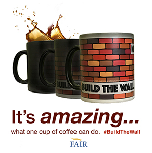 Build The Wall Mug