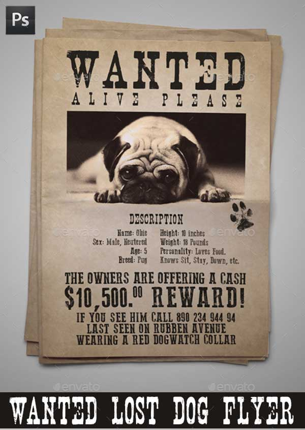 Wanted-Lost-Dog-Flyer