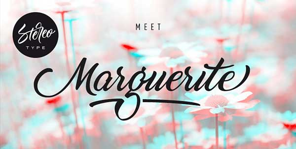 Marguerite-Calligraphy-Font