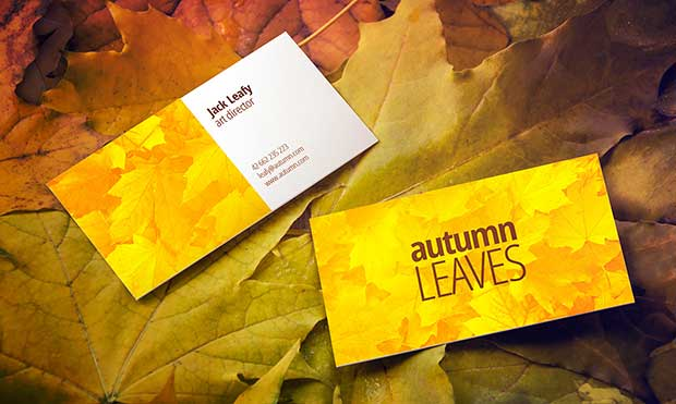 free-autumn-leaves-business-card-mockup
