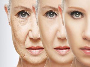 Novellus Skin Creme Rejuvelhecedor