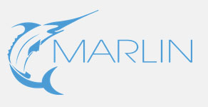 Marlin Web Design