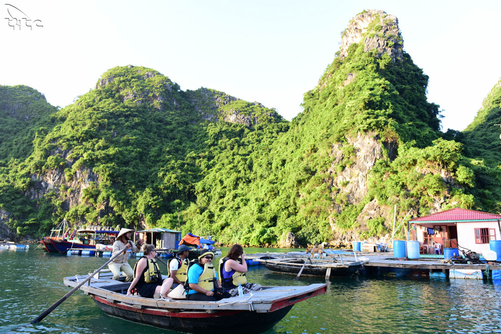 International visitors to Viet Nam in December and 12 months of 2017
