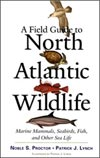A Field Guide to North Atlantic Wildlife, by Patrick J. Lynch, book cover
