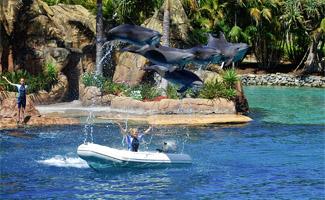 Seaworld - Queensland Island Holiday