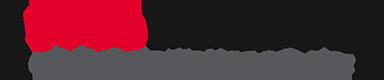 Web Wizards Logo