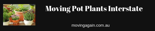 Moving Pot Plants Interstate