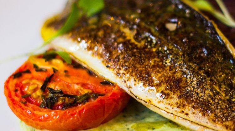 Mackerel food dish
