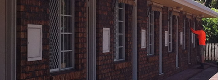 banner_pollys_reduced