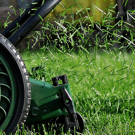 Lawn Mowing Mount Druitt, Lawn Care Epping, Gardening Mount Druitt