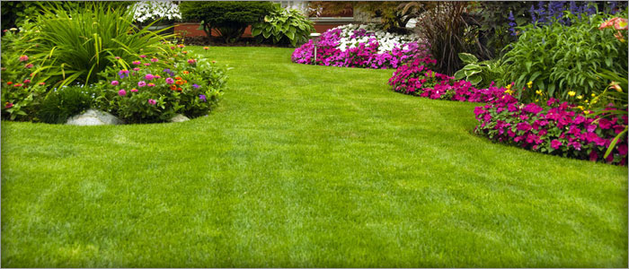 Turfing Epping, Lawn Mowing Blacktown, Lawn Care Auburn