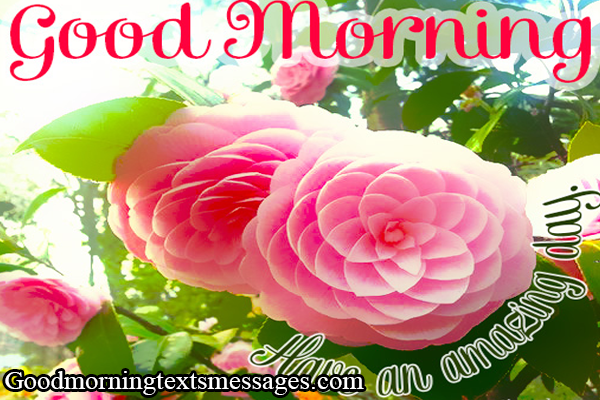 Good Morning Picture Messages ForBeautiful