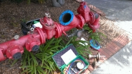 Backflow and TMV Testing