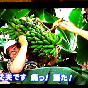 東海テレビスイッチの放送3