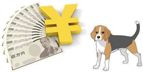犬を飼うといくらかかるの?