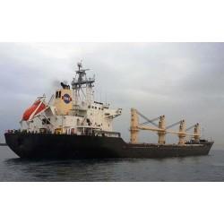 出售18600载重吨散货船