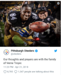 Steelers troyer 6578.png