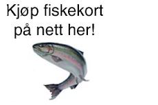 FISKEKORT FOR STORSJØEN.