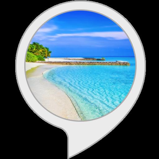 magical ocean sound