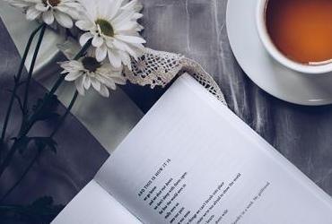 Izsludināts latviešu populārās literatūras romānu konkurss