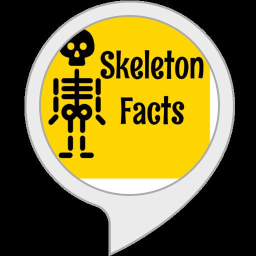Skeleton Facts